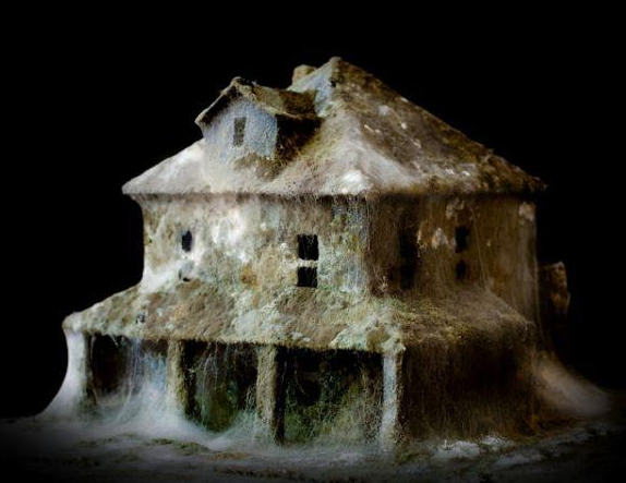 The incredible mould-as-art of Daniele Del Nero. The UK housing stock is in desperate need of renewal.